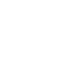 Carolina Foundation