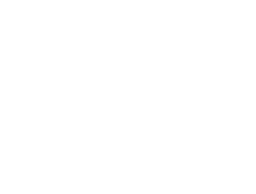 UN Centre for Regional Development