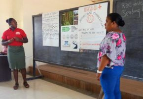 CAD engages stakeholders to fight deforestation in Guyana