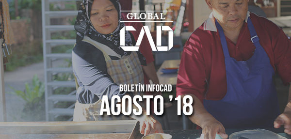 Boletín InfoCAD agosto 2018