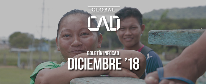 Boletín InfoCAD diciembre 2018