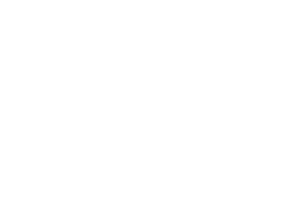 International and Ibero-American Foundation for Administration and Public Policies (FIIAPP)