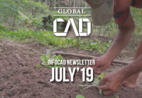 InfoCAD Newsletter July 2019