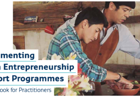 Implementing Youth Entrepreneurship Support Programmes: A Handbook for Practitioners