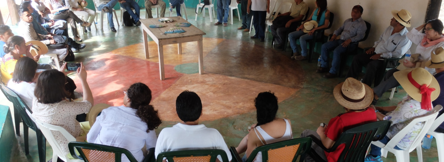 Partnerships as Drivers of Development: A Reflection on the Impact of Partnerships in the Mayan Context and in Mexico