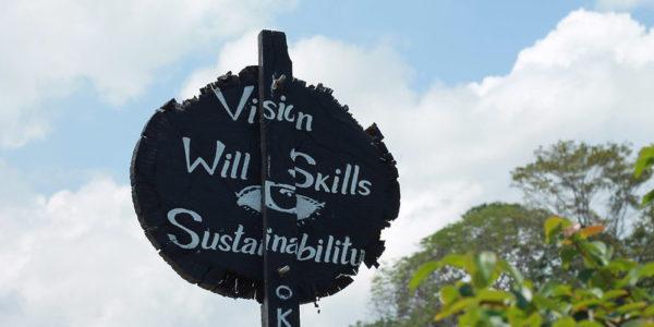 Celebrant el Dia Mundial del Medi Ambient: els nostres compromisos amb la sostenibilitat ambiental