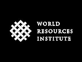 Instituto de Recursos Mundiales (WRI)