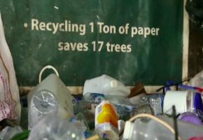 Eco Bali: Promoviendo soluciones sostenibles para la gestión de residuos