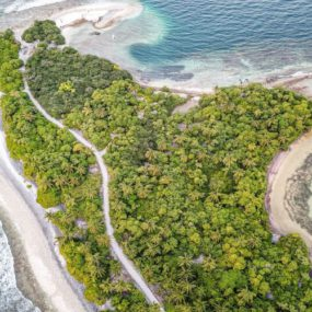 Nature-based Solutions: Harnessing the power of nature for society