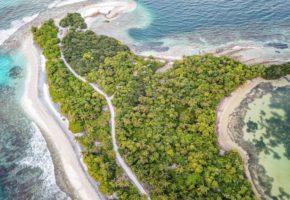 Soluciones basadas en la naturaleza: aprovechar el potencial de la naturaleza en pro de la sociedad