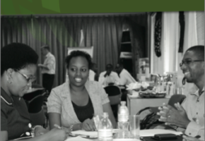 Strengthening capacities for innovation through Agribusiness Incubation Training
